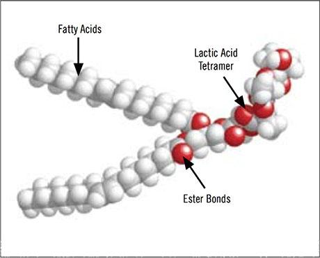 3DMe-Molecular-Structure Enhanced Reductive Dechlorination in a Fast Flowing Aerobic Aquifer