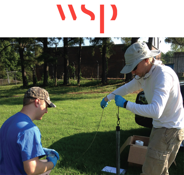 remediation project with WSP