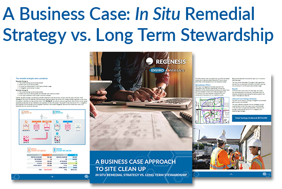 Business case for remediation