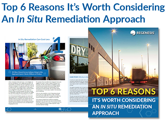 why in-situ remediation