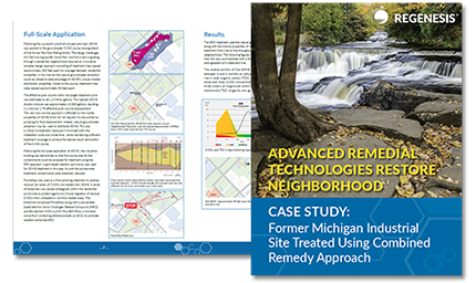 remediation case study